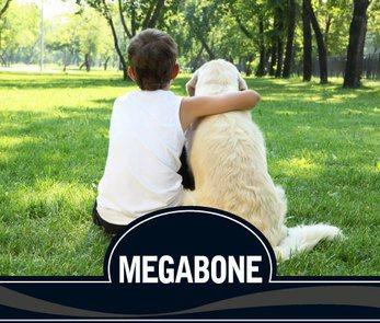 Megabone